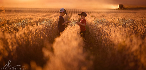 young boys in ready to harvest soybean field