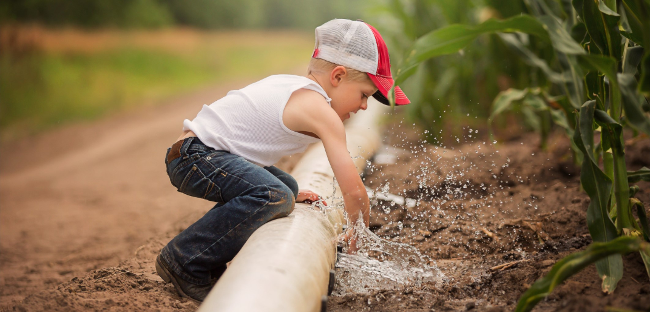 boy irrigating corn